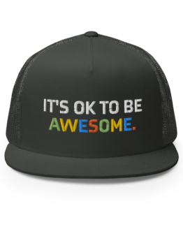 It's OK To Be Awesome Charcoal Snapback Trucker Cap