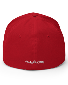 Make Red Hats Wearable Again Structured Twill Cap Back